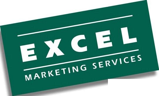 Excel Logo